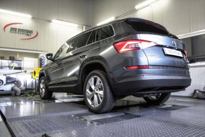 Sophisticated in design: Kodiaq performance at DTE